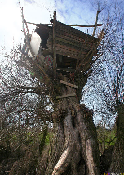 Baumhaus - Tree House