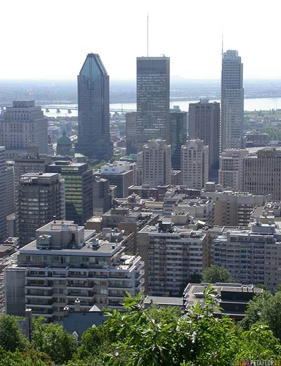 Montreal-Skyline-from-Mont-Royal-DSCN7332.jpg