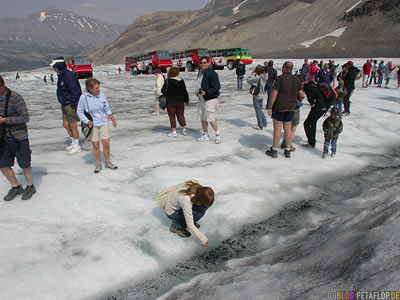 Brewster-Bus-Tour-Trip-on-Athabasca-Glacier-Gletscher-Columbia-Icefield-Jasper-National-Park-Rocky-Mountains-Alberta-Canada-Kanada-DSCN9544.jpg