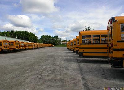 Cheese-Waggons-Schulbusse-School-Busses-Kenora-Ontario-Canada-Kanada-DSCN8374.jpg