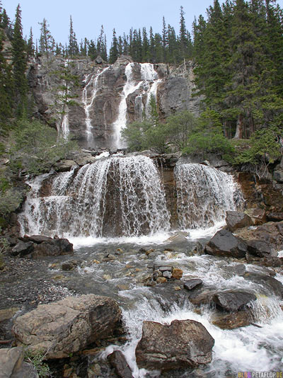 Falls-Wasserfall-Forest-Wald-Woods-Trees-Rocks-Jasper-National-Park-Rocky-Mountains-Alberta-Canada-Kanada-DSCN9604.jpg