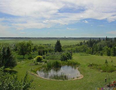 Garden-Garten-St-Saint-Albert-Alberta-Canada-Kanada-DSCN9933.jpg