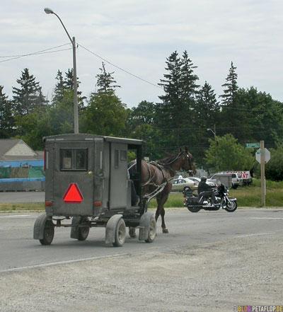 Germans-Deutsche-Mennonites-Mennoniten-carriage-Kutsche-Ontario-Canada-Kanada-DSCN7853.jpg