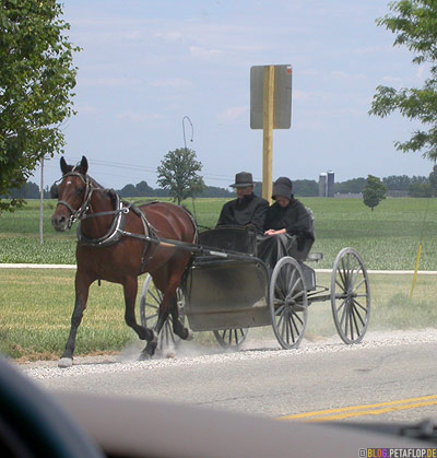 Germans-Deutsche-Mennonites-Mennoniten-carriage-Kutsche-Ontario-Canada-Kanada-DSCN7864.jpg