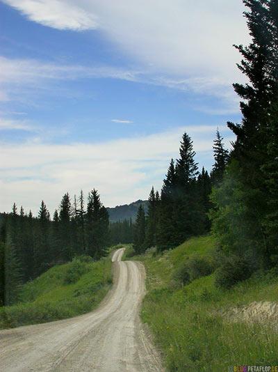 Gravel-Road-Path-Schotterpiste-Schotterweg-Cypress-Hills-Zypressenhuegel-Saskatchewan-Canada-Kanada-DSCN8944.jpg