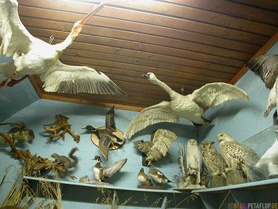 Heritage-Museum-Portage-la-Prairie-Manitoba-Canada-Kanada-DSCN8579.jpg