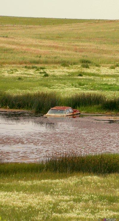 immersed-sunk-car-wreck-in-a-pond-lake-halb-versunkenes-Autowrack-in-einem-Teich-See-Carmichael-Saskatchewan-Canada-Kanada-DSCN8891.jpg