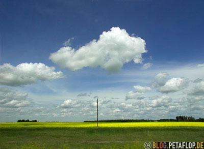 Manitoba-Landscape-Landschaft-Clouds-Wolken-Raps-Canola-Trans-Canada-Highway-Autobahn-Kanada-DSCN8385.jpg