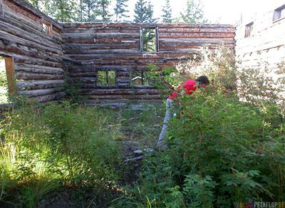Montague-Roadhouse-Holzhaus-Ruin-Blockhaus-Ruine-Klondike-Highway-Yukon-Canada-Kanada-DSCN0550.jpg