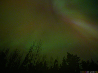 Northern-Light-Aurora-Borealis-Nordlicht-Northern-Lights-Center-Projection-Alaska-Highway-Watson-Lake-Yukon-Canada-Kanada-DSCN0417.jpg
