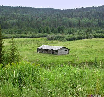 old-hut-alte-Huette-Cypress-Hills-Zypressenhuegel-Saskatchewan-Canada-Kanada-DSCN8942.jpg