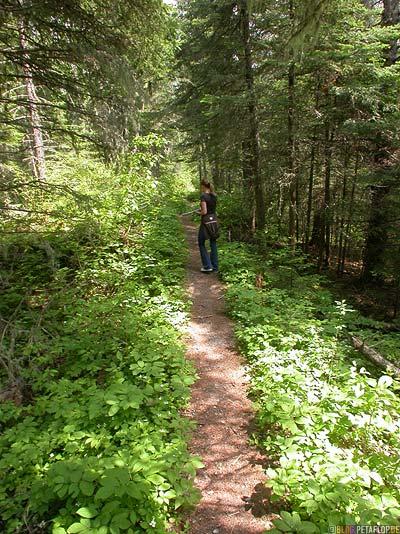 Pukaskwa-National-Park-Ontario-Canada-Kanada-DSCN8232.jpg