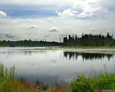 Rest-Area-Rastplatz-Trans-Canada-Highway-Ontario-Kanada-DSCN8310.jpg