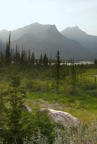 Rocky-Mountains-Jasper-National-Park-Alberta-Canada-Kanada-DSCN9683.jpg