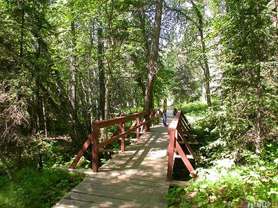 Way-to-Liard-River-Hot-Springs-Heisse-Quellen--Alaska-Highway-BC-British-Columbia-Canada-Kanada-DSCN0324.jpg