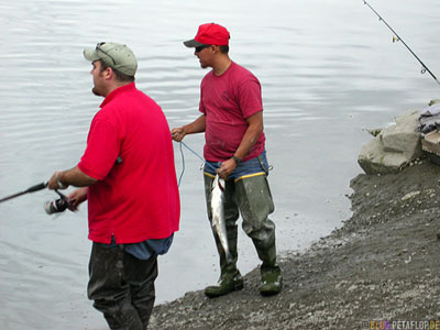 Angler-Sports-Fisher-Salmon-Lachs-Ship-Creek-Anchorage-Alaska-USA-DSCN1401.jpg