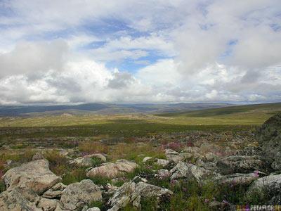 Arctic-Alpine-Tundra-Fairbanks-to-Arctic-Circle-Nordpolarkreis-Dalton-Highway-to-Prudhoe-Bay-Alaska-USA-DSCN1109.jpg