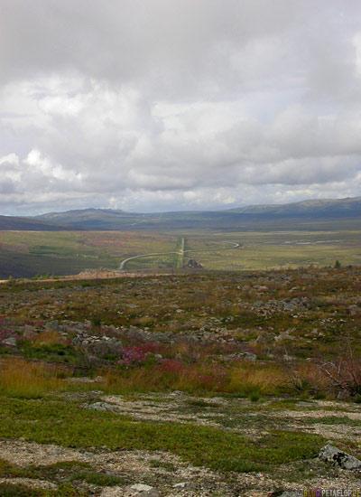 Arctic-Alpine-Tundra-Fairbanks-to-Arctic-Circle-Nordpolarkreis-Dalton-Highway-to-Prudhoe-Bay-Alaska-USA-DSCN1110.jpg