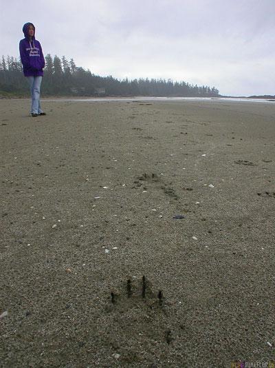 Bear-Tracks-Baerenspuren-Sand-Strand-Pacific-Rim-National-Park-near-Tofino-Beach-Vancouver-Island-BC-British-Columbia-Canada-Kanada-DSCN3079.jpg
