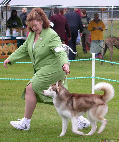 Dog-Show-Competition-Hundeschau-Wettkampf-Husky-Palmer-Alaska-USA-DSCN1431.jpg