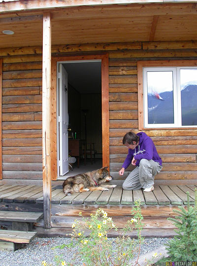 Dog-Stardust-Motel-Room-Zimmer-Alaska-Highway-Haines-Junction-Yukon-Canada-Kanada-DSCN2234.jpg