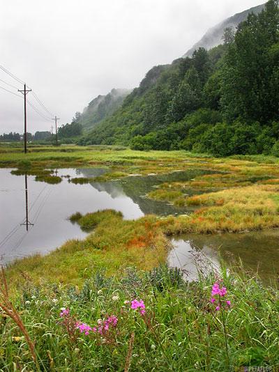Flood-Lands-Lake-Pond-See-Teich-low-clouds-tiefe-Wolken-Nebel-Fog-Glenn-Highway-Valdez-Alaska-USA-DSCN1548.jpg