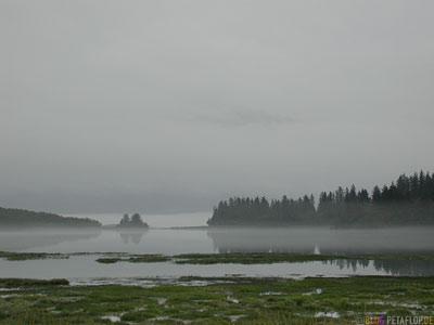 Flood-Lands-low-clouds-tiefe-Wolken-Nebel-Fog-Glenn-Highway-Valdez-Alaska-USA-DSCN1537.jpg