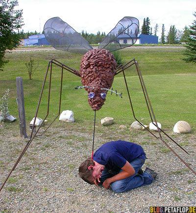 Giant-Mosquito-bites-Riesenmoskito-Riesenmuecke-End-of-Alaska-Highway-Mile-1422-Delta-Junction-Alaska-USA-DSCN0969.jpg
