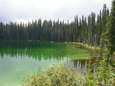 Green-Lake-near-blue-river-gru?ner-See-Cassiar-Highway-British-Columbia-BC-Canada-Kanada-DSCN2310.jpg