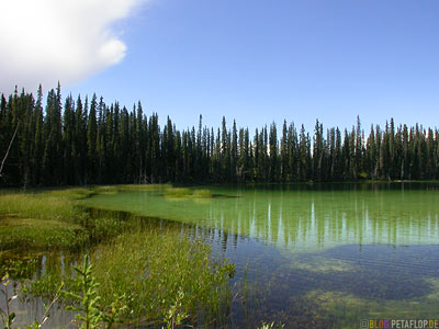 Green-Lake-near-blue-river-gru?ner-See-Cassiar-Highway-British-Columbia-BC-Canada-Kanada-DSCN2299.jpg