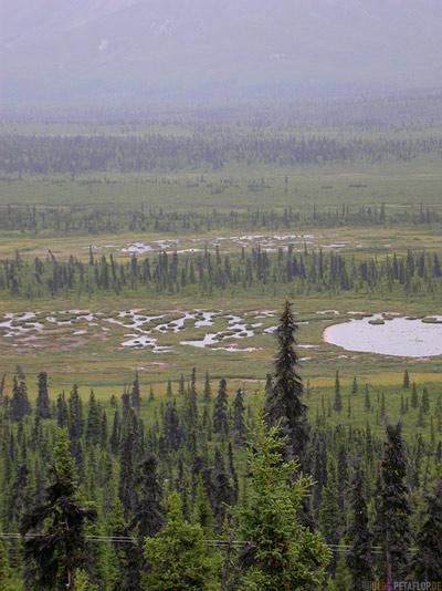 Matanuska-Lakes-Seen-Valley-Tal-Glenn-Highway-Alaska-USA-DSCN1524.jpg