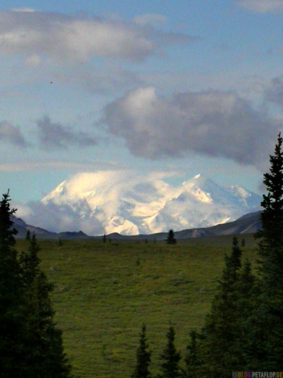 Mount-McKinley-from-Savage-River-Campground-Campingplatz-Denali-National-Park-Nationalpark-Alaska-USA-DSCN1288.jpg