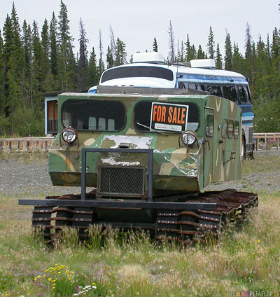 old-snow-mobile-for-sale-Schneemobil-camo-camouflage-Tarnmuster-Glenn-Highway-Alaska-USA-DSCN1525.jpg