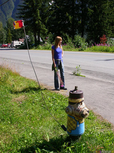 painted-angemalter-Hydrant-Stewart-BC-British-Columbia-Canada-kanada-DSCN2548.jpg