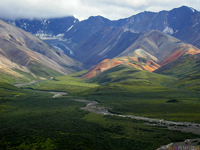 Polychrome-Overlook-Mountains-Berge-Range-Denali-National-Park-Nationalpark-Fish-Creek-Shuttle-Bus-Alaska-USA-DSCN1232.jpg