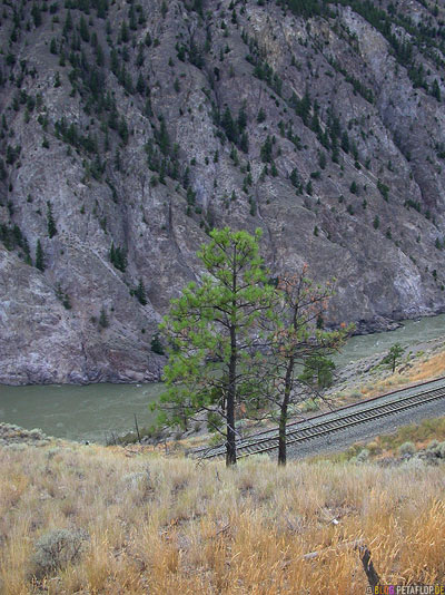 Railway-Fraser-River-Valley-BC-British-Columbia-Canada-Kanada-DSCN2832.jpg