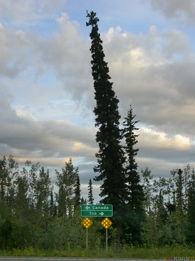 Road-Sign-Canada-Tok-Taylor-Highway-Alaska-USA-DSCN0944.jpg