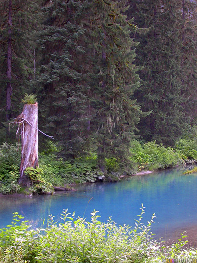 Scenery-blue-water-Fish-Creek-Wildlife-Observation-Site-Hyder-Alaska-USA-DSCN2467.jpg