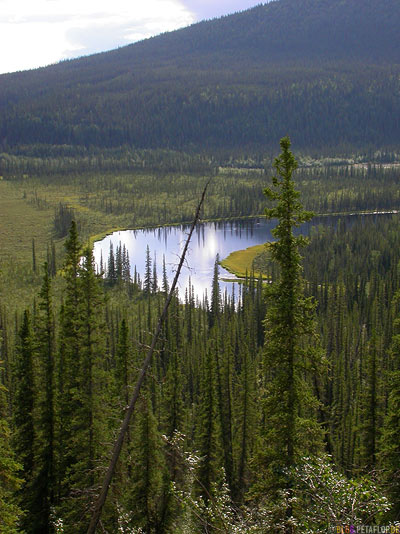 Scenery-Landschaft-River-Fluss-Taylor-Highway-Alaska-USA-DSCN0887.jpg