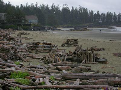 Sea-Logs-Strandgut-Sand-Strand-Treibgut-Pacific-Rim-National-Park-near-Tofino-Beach-Vancouver-Island-BC-British-Columbia-Canada-Kanada-DSCN3092.jpg