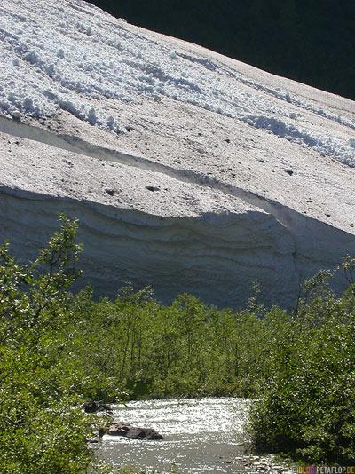 Snow-field-near-Schneefeld-Bear-Glacier-Gletscher-Highway-37a-Stewart-BC-British-Columbia-Canada-Kanada-DSCN2570.jpg