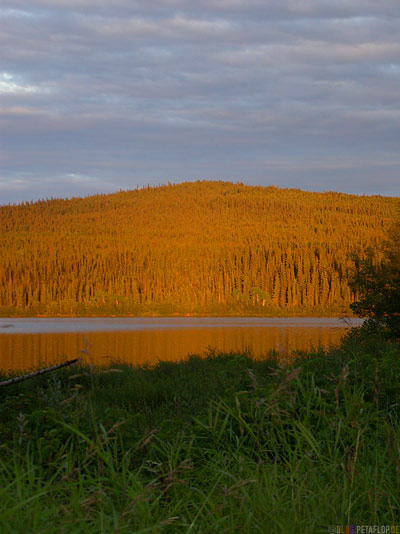 Sunset-woods-Lake-Teslin-River-Campground-Alaska-Highway-Teslin-Yukon-Canada-Kanada-DSCN2280.jpg