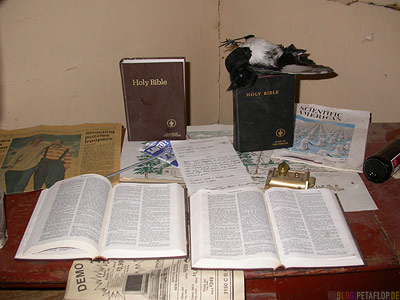 Tonsina-River-Lodge-haunted-house-Spukhaus-Geisterhaus-dead-magpie-tote-Elster-Bibeln-Bibles-Tonsina-Alaska-USA-DSCN1881.jpg