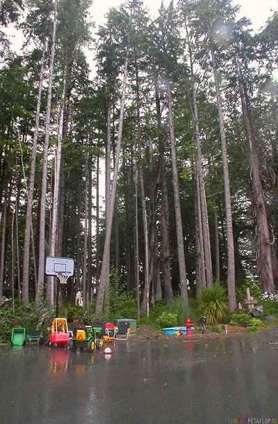 Toys-Frontyard-Tofino-Vancouver-Island-BC-British-Columbia-Canada-Kanada-DSCN3192.jpg