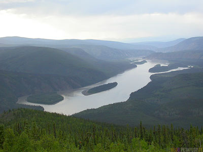 Yukon-View-from-Midnight-Dome-Dawson-City-Yukon-Canada-Kanada-DSCN0651.jpg