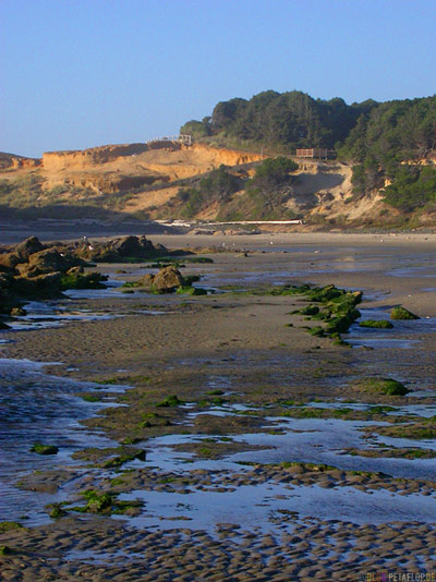 Beach-Strand-Oregon-Coast-near-Newport-Oregon-USA-DSCN3892.jpg
