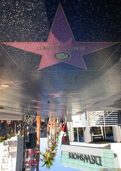 David-Bowie-Walk-of-Fame-Star-Hollywood-Boulevard-Los-Angeles-USA-DSCN5467.jpg