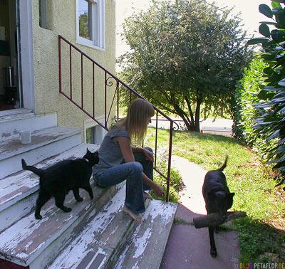 Dog-Cat-Skylar-Rainier-Beach-Stairs-Seattle-Washington-USA-DSCN3502.jpg