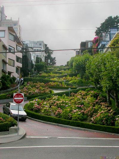 famous-Lombard-Street-serpentine-road-Serpentinenstrasse-SF-San-Francisco-California-Kalifornien-USA-DSCN5175.jpg