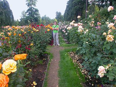 International-Rose-Test-Gardens-Portland-Oregon-USA-DSCN3793.jpg